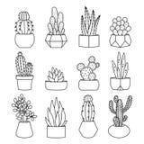 Ligne cactus de style et ensemble de vecteur de succulents illustration de vecteur