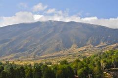 Ligne d'arbre et pentes du mont Etna, Sicile Images libres de droits