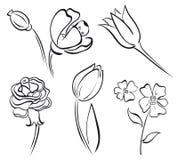 Ligne d'art de fleur Image libre de droits
