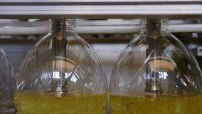 Ligne d'usine de production d'huile de tournesols banque de vidéos