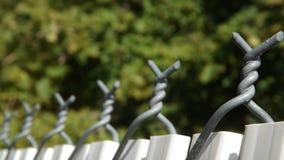 Ligne de barrière verte de la vie Images libres de droits