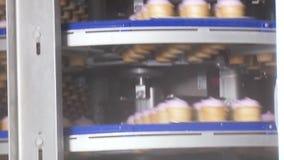 Ligne de convoyeur de crème glacée  banque de vidéos