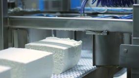 Ligne de fabrication de fromage Usine de production de fromage Usine de transformation des produits alimentaires banque de vidéos