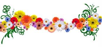 Ligne de fleur Photos stock