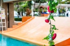 Ligne de fleur rose de verticale avec le glisseur de natation comme fond photos stock