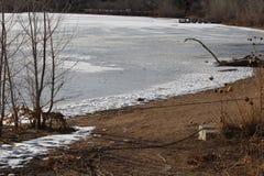 Ligne de lac et de rivage Images stock