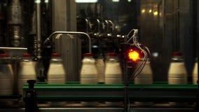 Ligne de production laitière Fermez-vous du processus automatisé à l'usine de nourriture Lait se renversant dans la bouteille en  clips vidéos