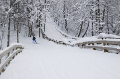 Ligne de ski Image stock