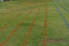 Ligne de voie d'herbe ou champ courante de course image libre de droits