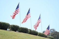 Ligne des drapeaux américains au cimetière de Golden Gate Image libre de droits