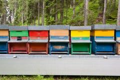 Ligne des ruches Images libres de droits