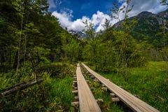 Ligne deux à la montagne Photo libre de droits