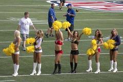 Ligne du Pro Bowl Images stock
