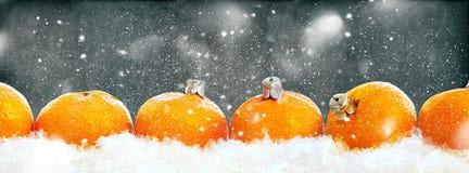 Ligne gris de rangée de mandarines de nouvelle année Photo stock