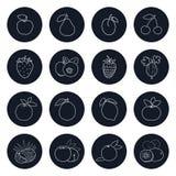 Ligne icônes des fruits et du Berrys illustration stock