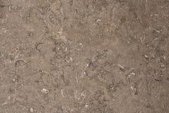 Ligne naturelle de désordre de la surface plane du mur de marbre gris avec beaucoup éraflure image libre de droits