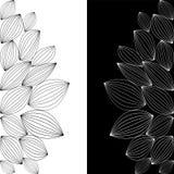 Ligne noire et blanche Photographie stock