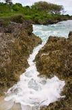 Ligne rocailleuse de côte, Tonga Photos stock