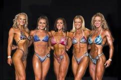 Ligne sexy de finalistes de forme physique Image libre de droits