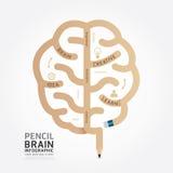 Ligne style de diagramme de conception de cerveau de crayon de vecteur d'Infographics Photo libre de droits