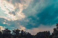 Ligne supérieure d'arbres verts au-dessus de ciel image libre de droits