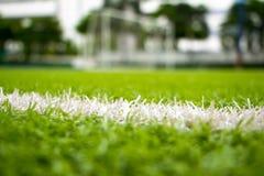 Ligne sur l'herbe Photo stock