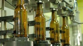 Ligne technologique pour la mise en bouteilles de la bière banque de vidéos