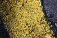 Ligne texture de rue Photo libre de droits
