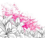 Ligne tirée par la main rose de carte de lis de vecteur illustration stock