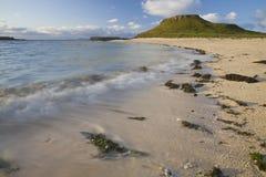 Ligne Verte bleue ciel d'herbe de nuages de plage Photos stock