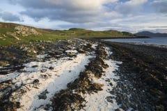 Ligne Verte bleue ciel d'herbe de nuages de plage Images stock