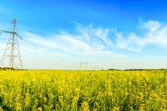 Lignes à haute tension à haute tension dans le domaine de graine de colza Photographie stock