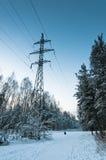 Lignes électriques en bois neigeux Images stock