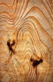 Lignes abstraites d'anneau annuel sur la surface en bois image stock