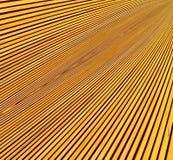 Lignes convergentes des planches Image stock