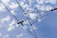 Lignes de câble de l'électricité de trolleybus de chariot images stock