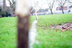 Lignes de but en parc Photographie stock