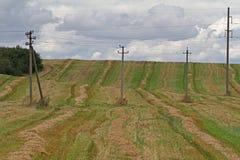 Lignes de transmission de l'électricité se tenant dans un domaine Photos stock