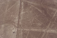 Lignes et geoglyphs de Nazca Photos stock