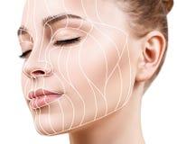 Lignes graphiques montrant l'effet de levage facial sur la peau image stock