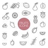 Lignes icônes de fruits et de baies Photos libres de droits