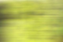Lignes jaunes vertes de tache floue de mouvement de fond de gradient Photos libres de droits