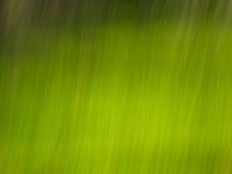 Lignes Vertes images stock