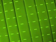 Lignes Vertes et lumière Image libre de droits
