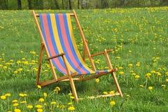 Ligstoel in de tuin Royalty-vrije Stock Fotografie