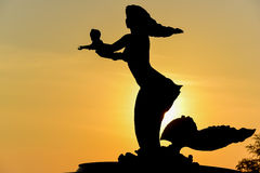 Ligth och skuggor av sjöjungfrun på solnedgångbakgrund Arkivfoto