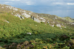 Ligue de Slieve, Irlande Photographie stock libre de droits