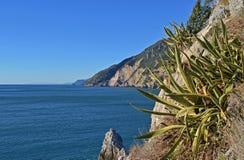 Ligurië, Italië, een mening van een rotsachtige kust dichtbij Portovenere royalty-vrije stock foto's