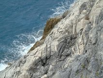 Ligurian Coast. Liguria Coast, Porto Venere, Italy Royalty Free Stock Photos