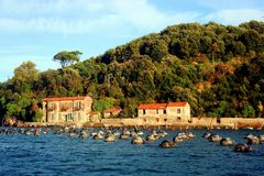 Liguria: floating fishing nets in the sea in front of the coast of Palmaria island with buildings and hill with trees Stock Photo